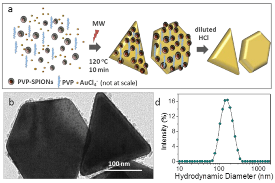 Gold nanotriangles decorated with superparamagnetic iron oxide nanoparticles