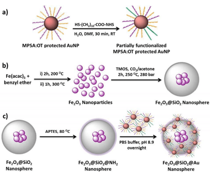 A silica-based magnetic platform decorated with mixed ligand gold nanoparticles: A recyclable catalyst for esterification reactions